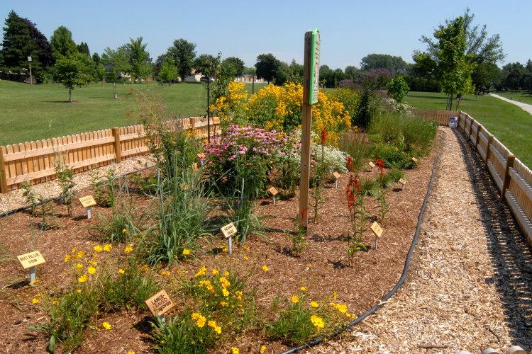 Mud Creek Prairie Garden Creation